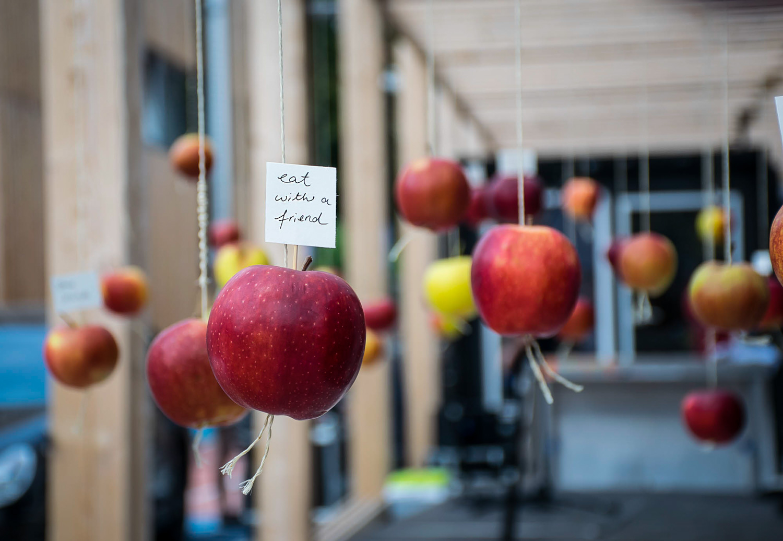 Wild and Root Eventagentur Food Installation Berlin