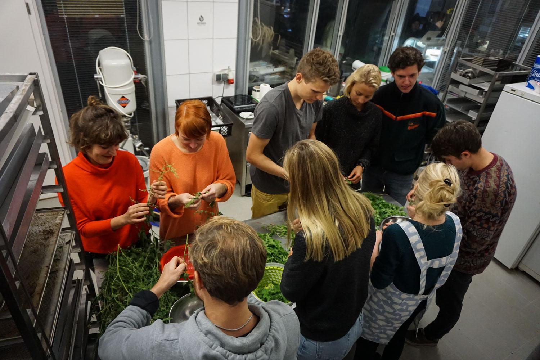 Wild and Root Workshop Berlin